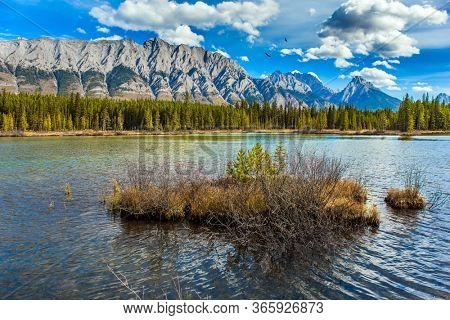 Indian summer in the Canadian Rockies. Lakeshore overgrown with coniferous forests. Magnificent lake with emerald glacial water. The concept of ecological and photo tourism