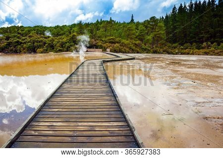 New Zealand, North Island. Wooden walkways for tourists laid through the hot lakes. The unique geothermal area of Rotorua. Wai-O-Tapu. Extreme, exotic and photo tourism concept