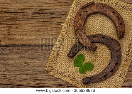 Two Very Old Cast Iron Metal Horse Horseshoes, Fresh Clover Leaf. Good Luck Symbol, St.patrick's Day