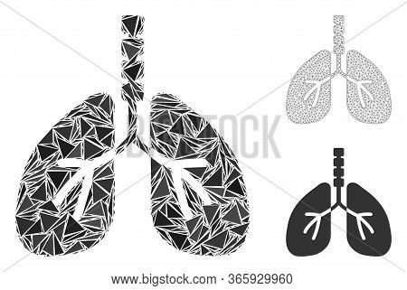 Triangle Mosaic Breathe System Icon With Mesh Vector Model. Breathe System Mosaic Icon Of Triangle E