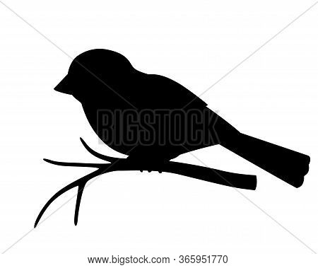 Silhouette Of A Small Bird - Sparrow Sitting On A Branch - Stock Vector Illustration For Logo Or Pic