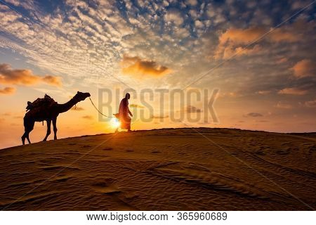 Indian cameleer (camel driver) bedouin with camel silhouettes in sand dunes of Thar desert on sunset. Caravan in Rajasthan travel tourism background safari adventure. Jaisalmer, Rajasthan, India
