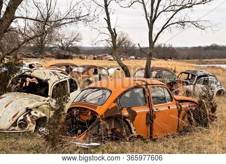 Okemah, Ok - 2 Mar 2020: Wrecked And Rusty Volkswagon Beetle Cars With Missing Parts And Broken Wind