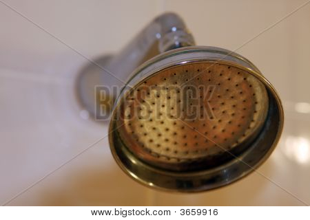Hotel Shower Head