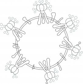 Coronavirus Virion Structure Without Color Fill. 2019-ncov, Covid-2019, Covid-19 Novel Coronavirus B