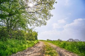 Summer Landscape With A Dirt Road Going Through A Rural Countryside Scenery