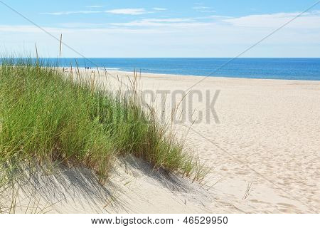 Dunes On A Sunny Beach Near The Beach. Summer.