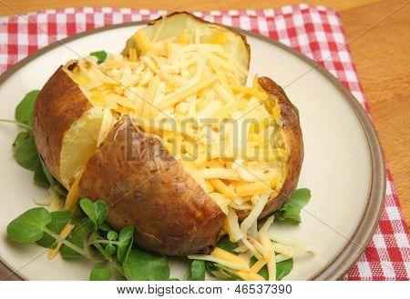 Jacket potato with shredded cheeses.