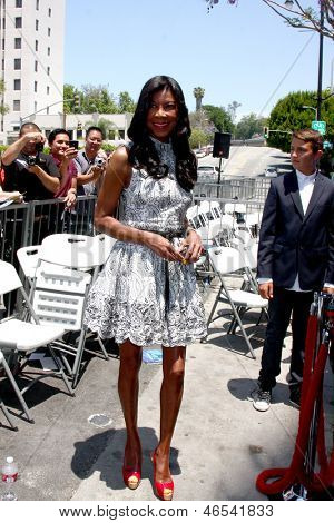 LOS ANGELES - MAY 31:  Natalie Cole at the David Foster Hollywood Walk of Fame Star Ceremony at the Capital Records Building on May 31, 2013 in Los Angeles, CA