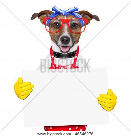 housewife dog holding a blank white placard poster