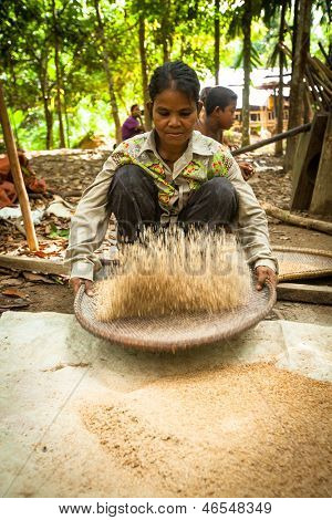 BERDUT, MALAYSIA - APR 8: Unidentified women Orang Asli thresh rice to remove chaff on Apr 8, 2013 in Berdut, Malaysia. More than 76% of all Orang Asli live below the poverty line.