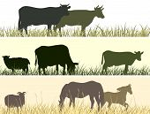 Horizontal vector banner: silhouettes of grazing animals (cow horse sheep). poster