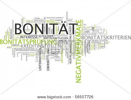 Word cloud -  credit-worthiness