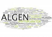 Word cloud - algae poster