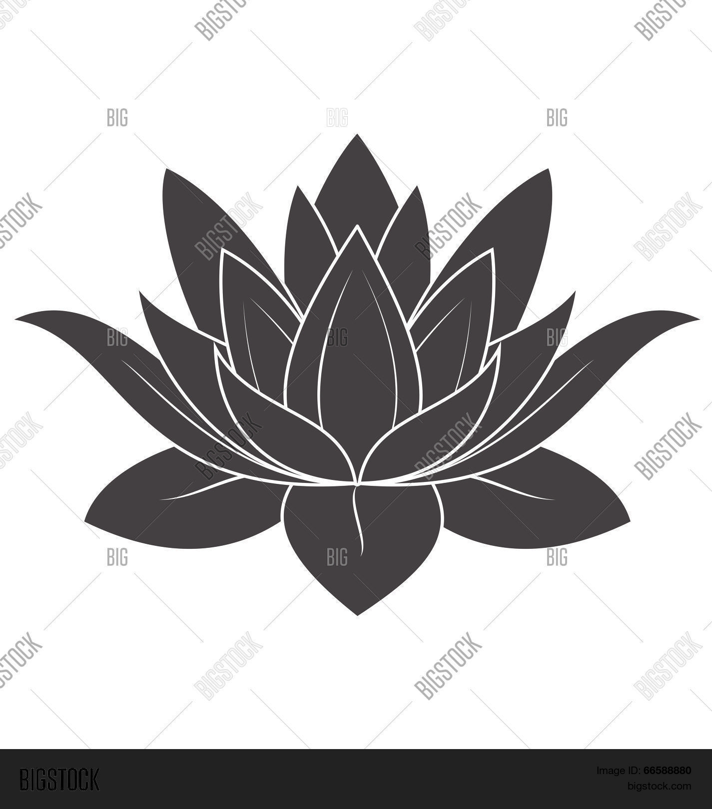 Lotus Flower Vector Photo Free Trial Bigstock