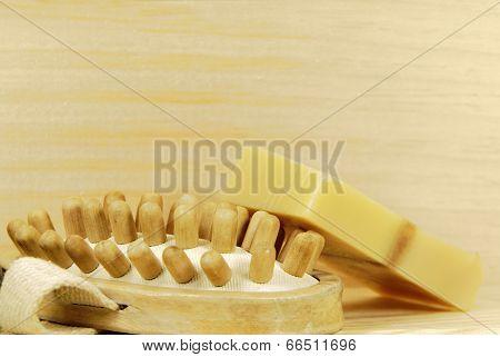 Spa Massage Brush