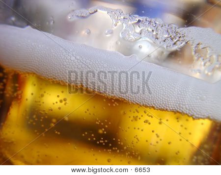 Fresh Beer ... I