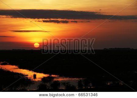 Sunset in Los Llanos tropical grassland in Venzuela