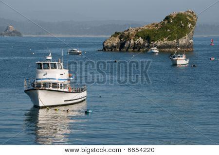 Fishing Trawlers on California Coast