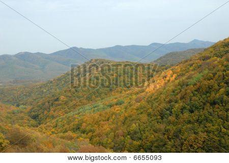 Foothills Of Caucasus