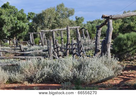 The Stockyards