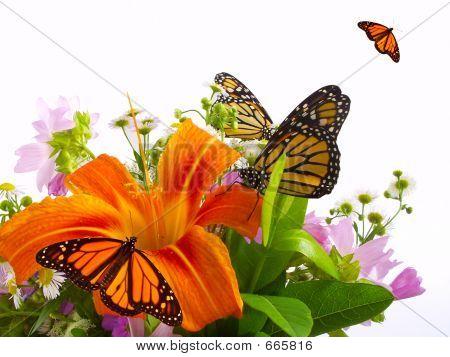 Monarch Butterflies on flower arrangement. poster