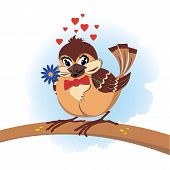 valentine cartoon vector illustration of the sparrow poster