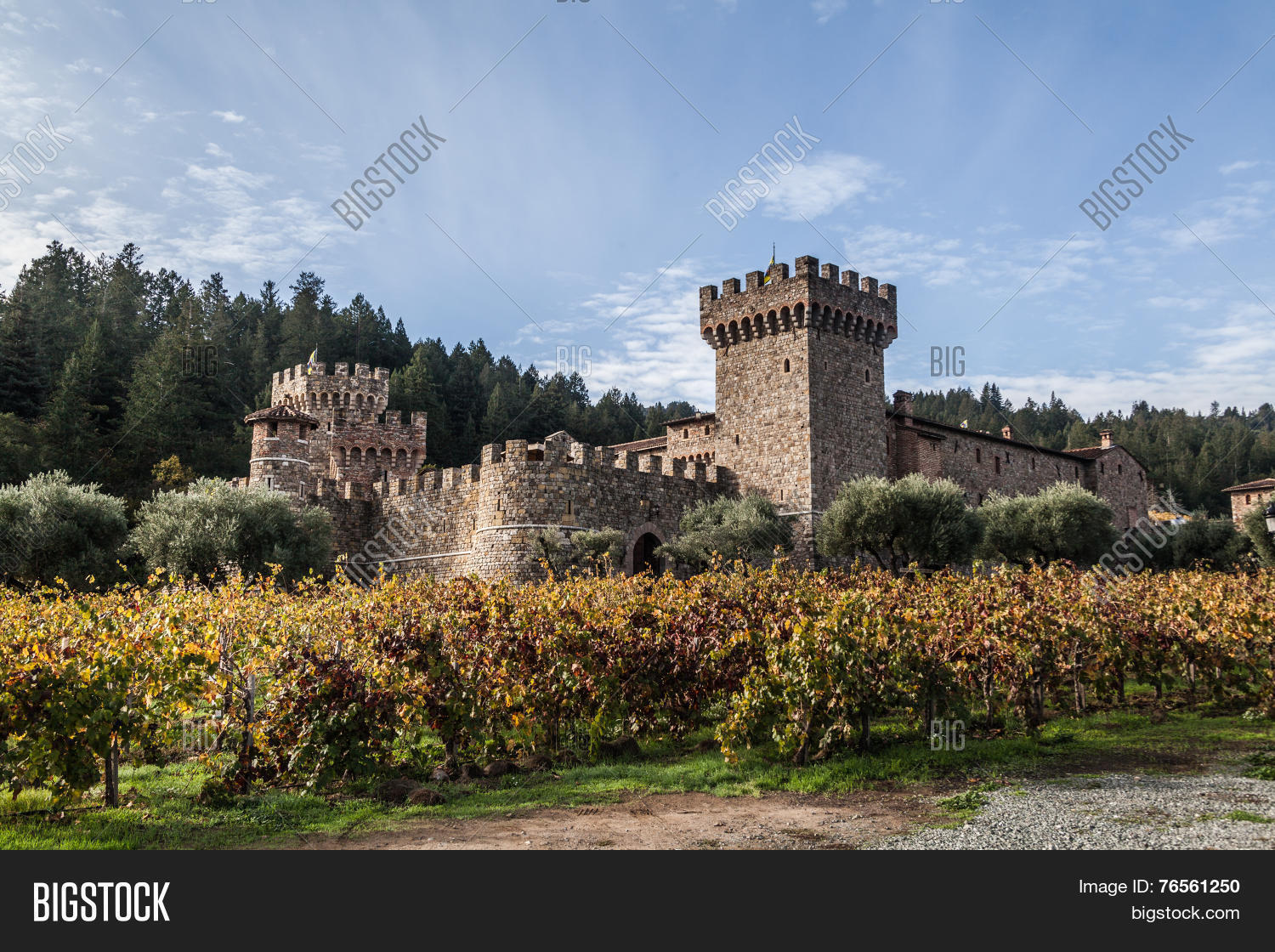 Castle Winery Image Photo Free Trial Bigstock