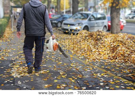 Worker With A Leaf Blower