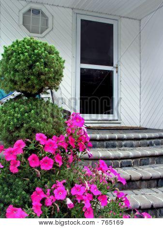 Flowers & front door