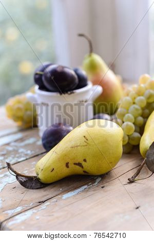 Autumn Fruits Pears, Plums And White Grapes Still Life