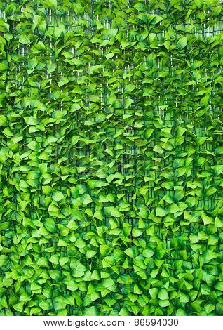 Green Background In The Form Of Artificial Foliage.