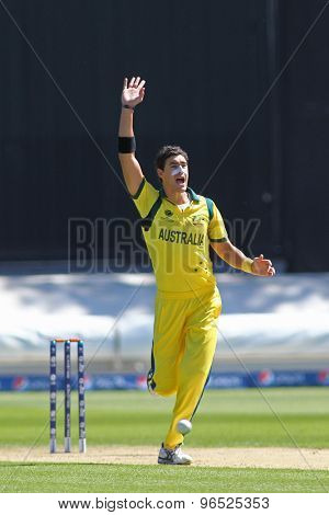CARDIFF, WALES - June 04 2013: Australia's Mitchell Starc celebrates taking the wicket of India's Murali Vijay (not pictured) during the ICC Champions Trophy warm up match between India and Australia