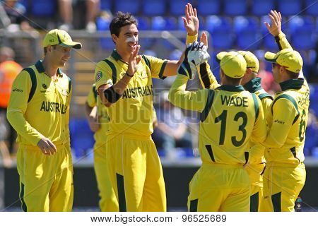 CARDIFF, WALES - June 04 2013: Australia's Mitchell Starc celebrates taking the wicket of India's Murali Vijay during the ICC Champions Trophy warm up  match between India and Australia