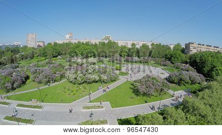 People get rest in Lilac Garden with Dry Fountain at spring sunny day. Aerial view. Garden total area is about 7 hectares.