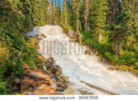 Majestic mountain river in Canada. Upper Joffre Lake Trail in British Columbia. poster