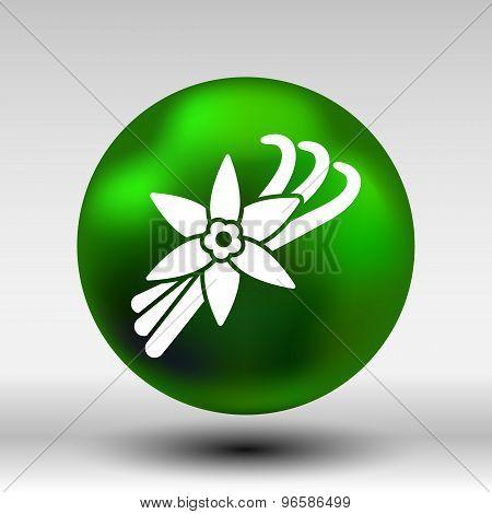 Vanilla flower and vanilla pods Vector Logo. poster