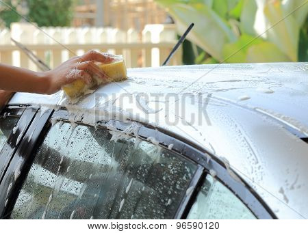 Woman Hand Hold Sponge Washing Car