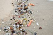 Garbage on a beach environmental pollution concept picture. poster