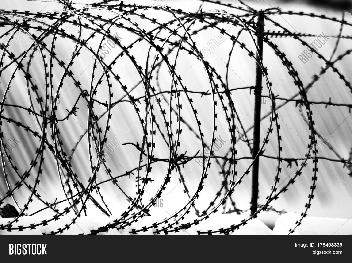 Barbed Wire Fence Image Photo Free Trial Bigstock