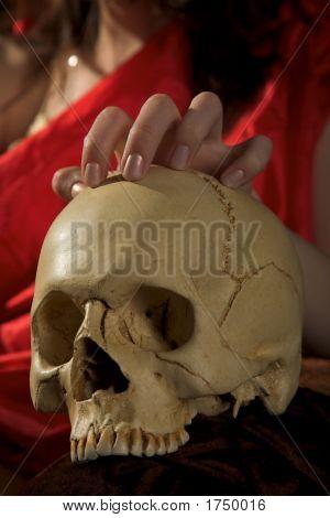 Cranium And Hand