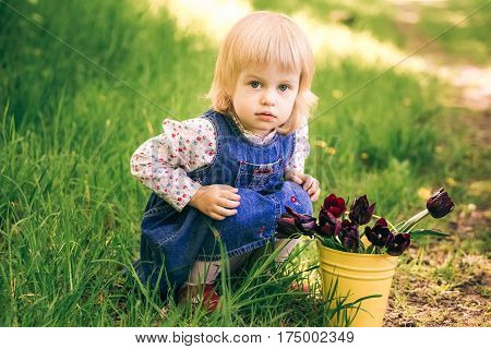 Portrait of happy little blond girl sitting near yellow bucket with tulip flowers. Cute funny child plays in sunny spring garden in countryside. Age of child 2 years and 4 month.