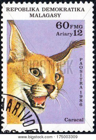 UKRAINE - CIRCA 2017: A stamp printed in Malagasy Madagascar shows Steppe lynx Caracal circa 1986