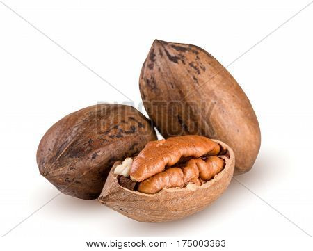 Three pecan nuts isolated on white background.