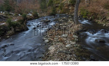 The rivulets in forest. Long flowing water between stones and trees.