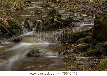 Small flowing stream in forest. Water flowing between tree stumps and stones.