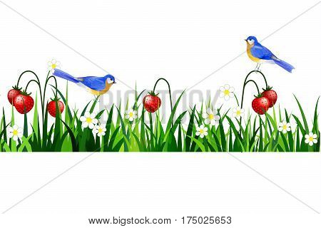Green Grass with strawberries and bluebirds seamless isolated clip art vector on white