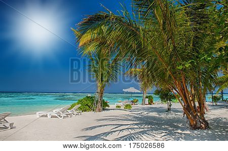 Tropical beach in Maldives. Tropical Paradise at Maldives with palms, sand and blue sky