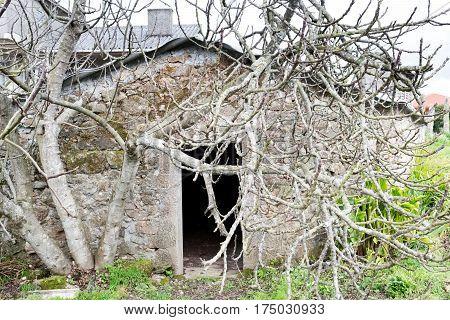 Abandoned House Near A Village Called Ledoño On A Rainy Winter Day. La Coruna, Spain