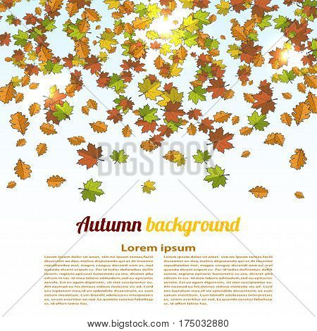 Autumn background with colored maple leaves. changing seasons illustration. Banner card poster. Cartoon style. Stock vector illustration
